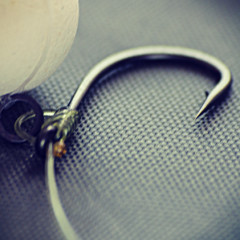 An angler is only as sharp as his hook