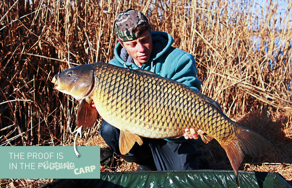 Otto Kruger with beautiful common carp from South Africa