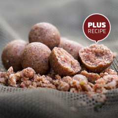 Homemade Boilies – How To Guide